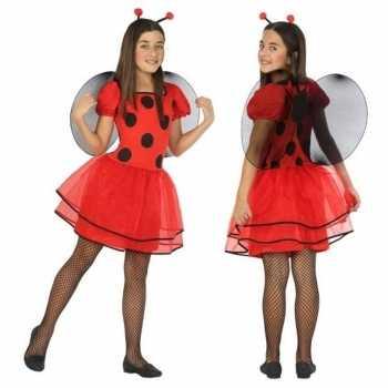 Foute dierenpak lieveheersbeestje jurk/jurkje voor meisjes party