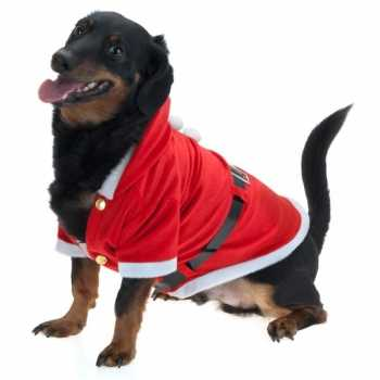 Foute kerst party kleding voor honden