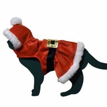 Foute kerstman pakje party kleding voor kat/poes