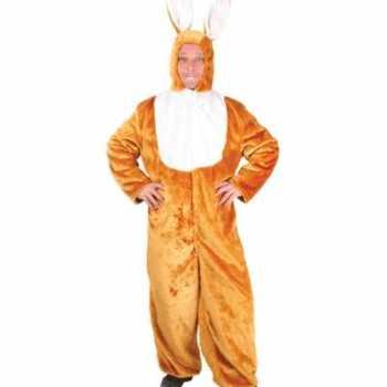 Foute konijnen party kleding pluche