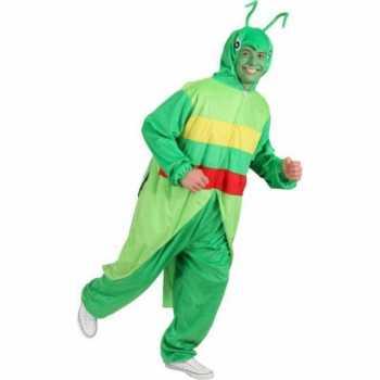Foute sprinkhaan party kleding voor volwassenen