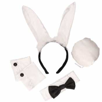 Foute zwart/witte playboy bunny party kleding